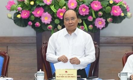 Vụ dưa hấu, thịt lợn 'rớt giá': Thủ tướng yêu cầu làm rõ nguyên nhân
