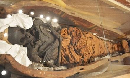 Phát hiện xác ướp Ai Cập 3.000 năm vùi trong hầm cùng cá sấu 1,6m