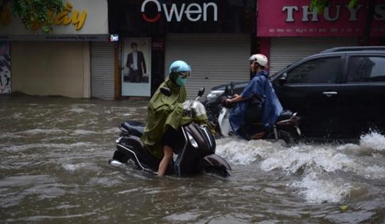 Hà Nội ngập nặng sau mưa lớn, cây cối đổ gãy