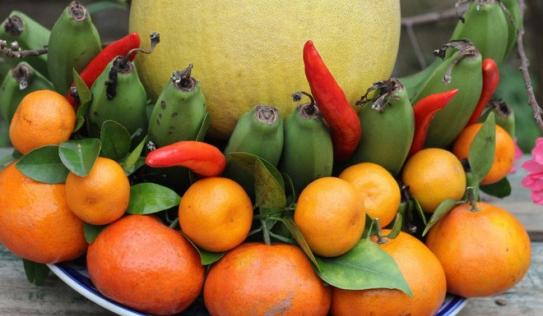 Cách chọn trái cây và bày mâm ngũ quả đơn giản nhất mà đẹp để mang may mắn cả năm
