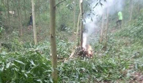 Bộ Quốc phòng thông tin chính thức về vụ máy bay quân sự rơi ở Nghệ An