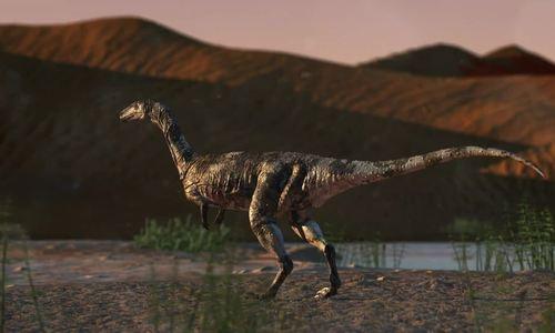 Phát hiện hóa thạch khủng long ăn thịt 90 triệu năm ở sa mạc