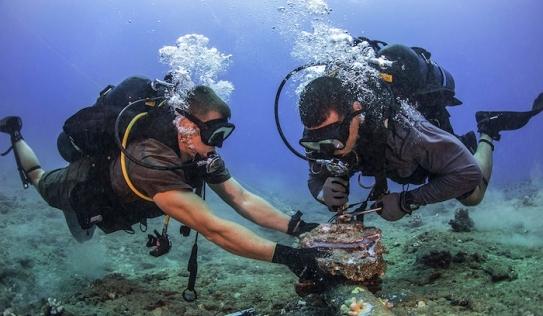 Tuyến cáp quang biển lại gặp sự cố, tốc độ truy cập Internet bị ảnh hưởng