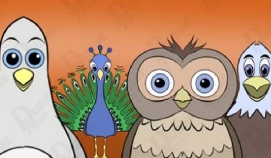 Bồ câu, cú, công, đại bàng: Loài chim yêu thích tiết lộ tính cách của bạn