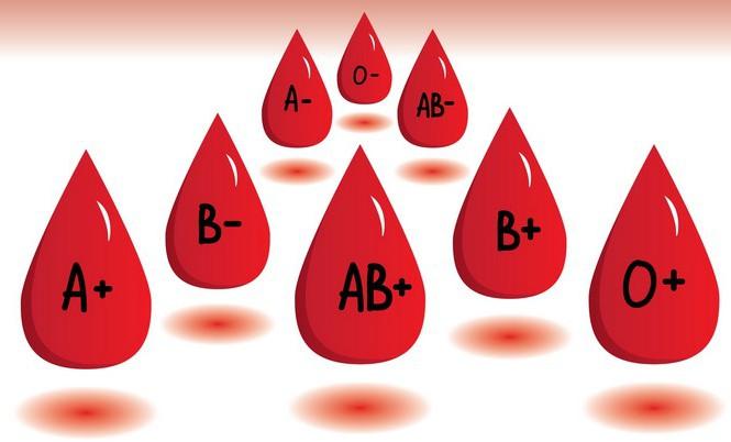 Nhóm máu không chỉ quyết ADN mà còn 'chốt luôn' tính cách của bạn như thế nào?