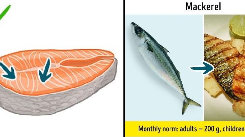 9 loại cá không nên ăn kẻo rước họa vào người