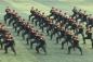 Video: Màn trình diễn võ thuật hoành tráng của các chiến sĩ Cảnh sát cơ động