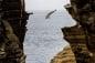 Trò chơi tử thần: Nhảy từ vách vúi xuống biển với vận tốc 85km/h