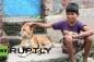 Kỳ lạ bé trai 10 tuổi nghiện bú sữa chó ở Ấn Độ