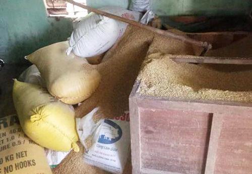 Vụ mất 49 cây vàng giấu trong thùng lúa: Chỉ diễn ra trong vòng 2 tiếng 1