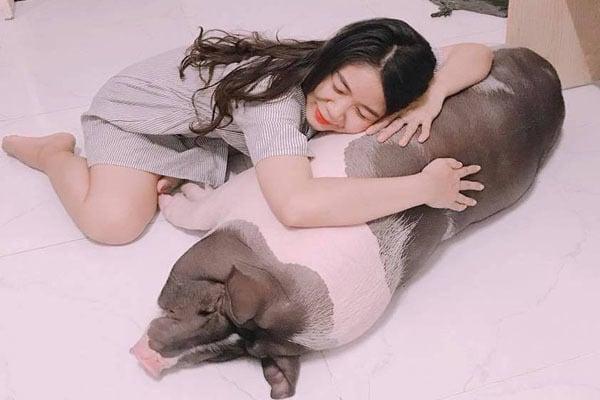 Cô gái Sài Thành nuôi heo 150 kg làm thú cưng, cùng ăn cùng ngủ 2