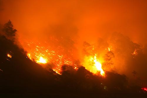 Tạm giữ một lão nông nghi gây cháy rừng tại Hà Tĩnh 1