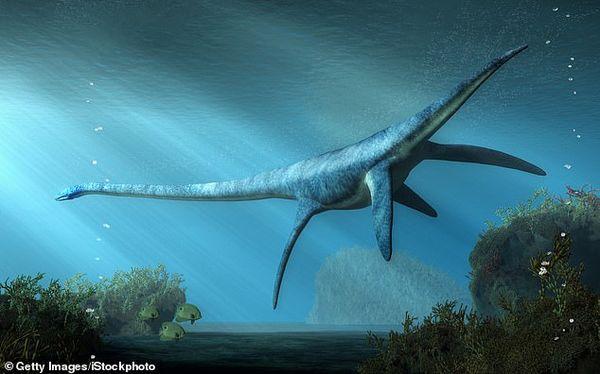Phát hiện 'quái vật hồ Loch Ness' hơn 70 triệu năm 1