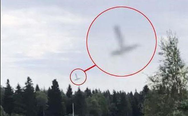 Rơi máy bay ở Thụy Điển, 9 người thiệt mạng 1