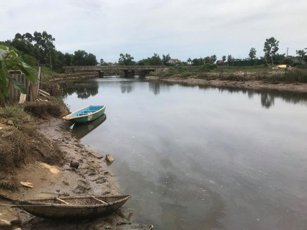 Cá sấu xuất hiện trên sông Hà Tĩnh sau mưa lớn gây xôn xao 1