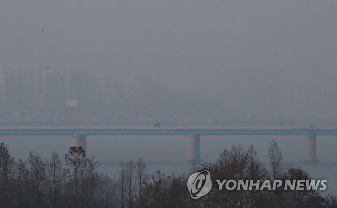 Quan chức Bộ tư Pháp Hàn Quốc phụ trách virus corona nhảy sông Hàn tự tử 1