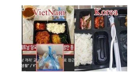 Dân mạng Hàn Quốc phản ứng sau ồn ào du khách Hàn bị cách ly ở Đà Nẵng 1