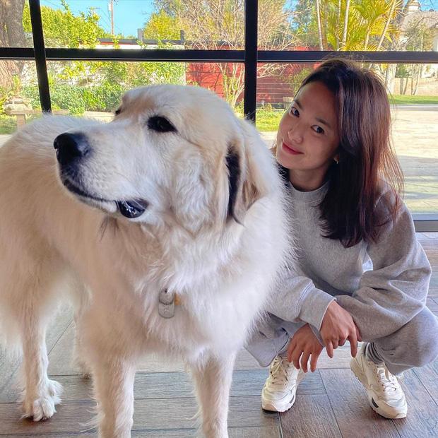 Động thái mới nhất của Song Hye Kyo hậu ồn ào: Khoe nhan sắc đỉnh cao khó cưỡng 4
