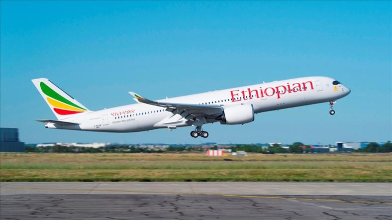 Cục Hàng không: Việt Nam có kế hoạch nhập dòng máy bay B737 Max 8 vừa rơi ở Ethiopia 1