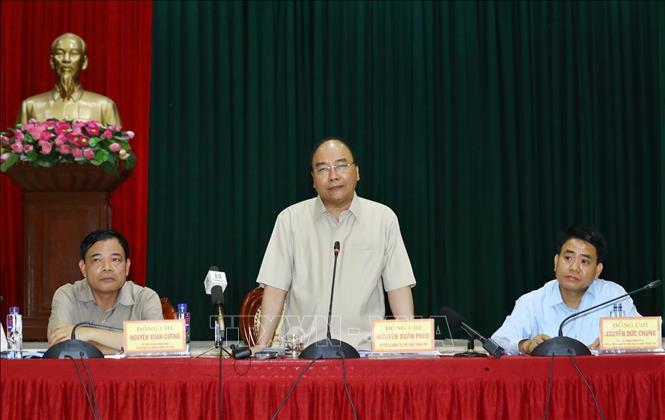 Thủ tướng: Cần huy động cả hệ thống chính trị vào cuộc phòng chống dịch tả lợn châu Phi 1