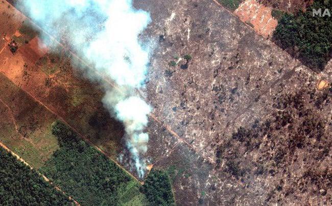 Cháy rừng Amazon: Vận tải cơ xả ngàn lít nước dập lửa cứu lá phổi xanh của trái đất 1