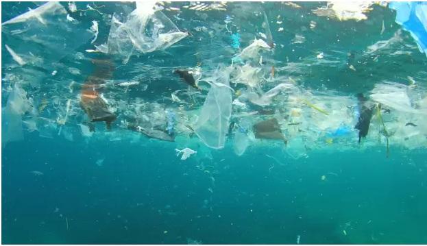 WHO công bố báo cáo về hạt vi nhựa và những mối lo ngại trong nước uống 2
