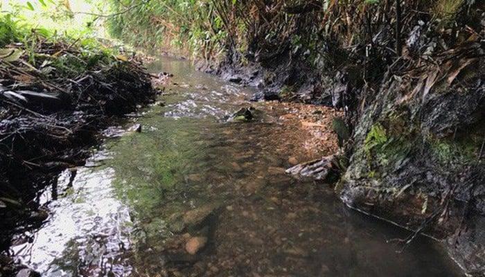 Vụ nước sạch Sông Đà nhiễm bẩn: Sinh mạng của người dân, trách nhiệm của ai? 2