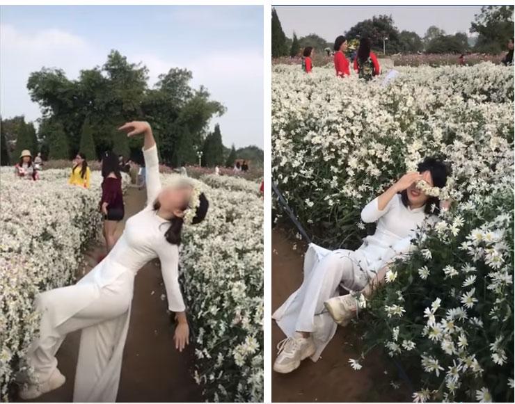 Lại thêm chị gái nằm trên hoa cúc để chụp ảnh khiến dân mạng 'nóng mắt' 4