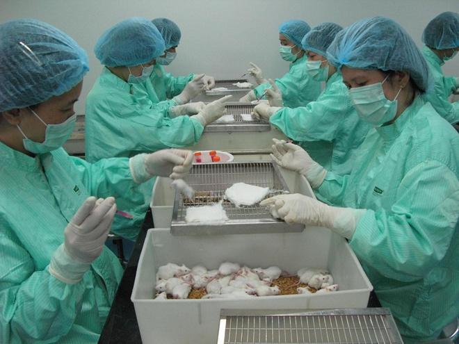 Chuyên gia dự đoán về tiến độ của vắc xin Covid-19 ở Việt Nam 1