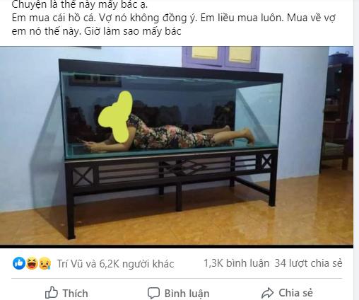Hết hồn khi thấy cảnh tượng trong bể cá vừa mua, chồng được dân mạng hiến kế cực phũ 1