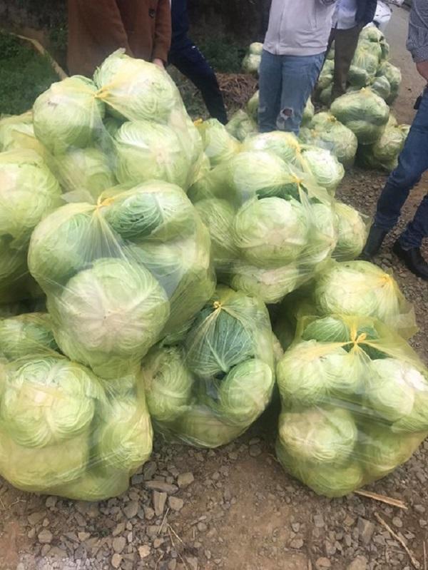 Ấm lòng câu chuyện Lai Châu gửi rau tiếp tế cho khu cách ly ở Hà Nội  4