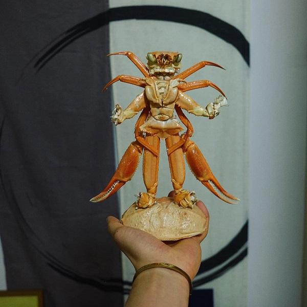 مدل سوپرمن ، ساخته شده از پوسته سرطان مردی که عاشق آشپزخانه است 7