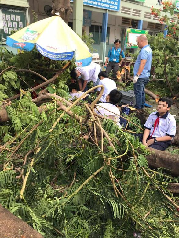 Vụ cây đổ khiến 1 học sinh tử vong: Nhân chứng nghe tiếng kêu la thảm thiết 3