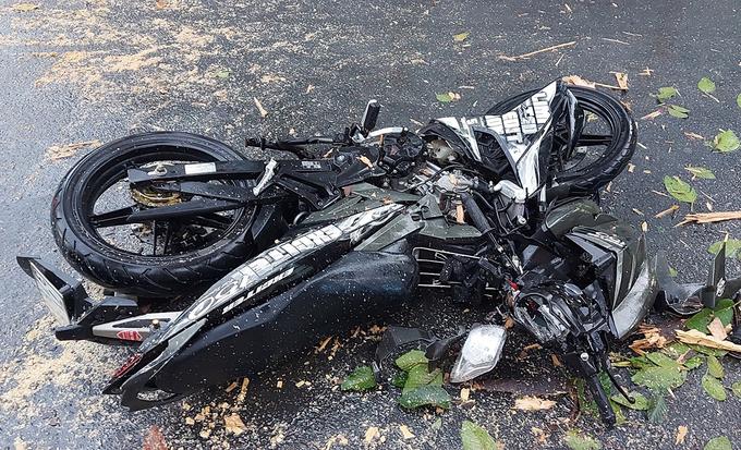 TP.HCM: Cây cổ thụ bật gốc đổ ngang, đè người đi xe máy bị thương 2