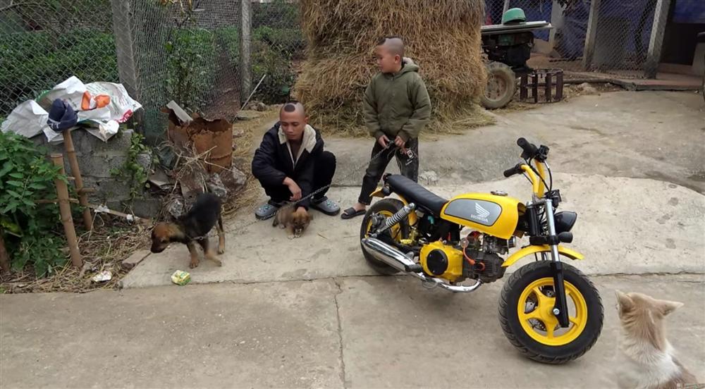 برادران تام مائو با مجبور کردن سگهای آویزان به جاده به کشیدن ، انتقادات زیادی را دریافت کردند 2