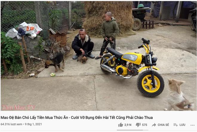 برادران تام مائو با مجبور کردن سگهای آویزان به جاده به کشیدن ، انتقادات زیادی را دریافت کردند 1