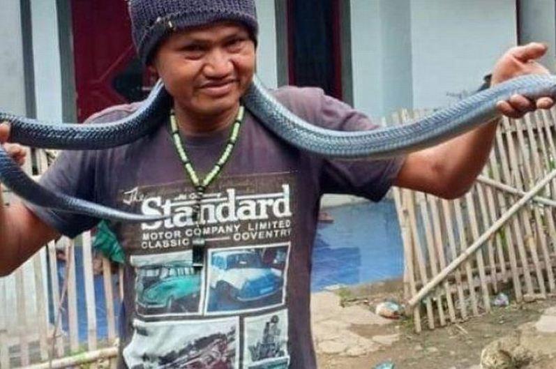 Ông chủ bị trăn dài 3m siết chết trong nhà tắm 1