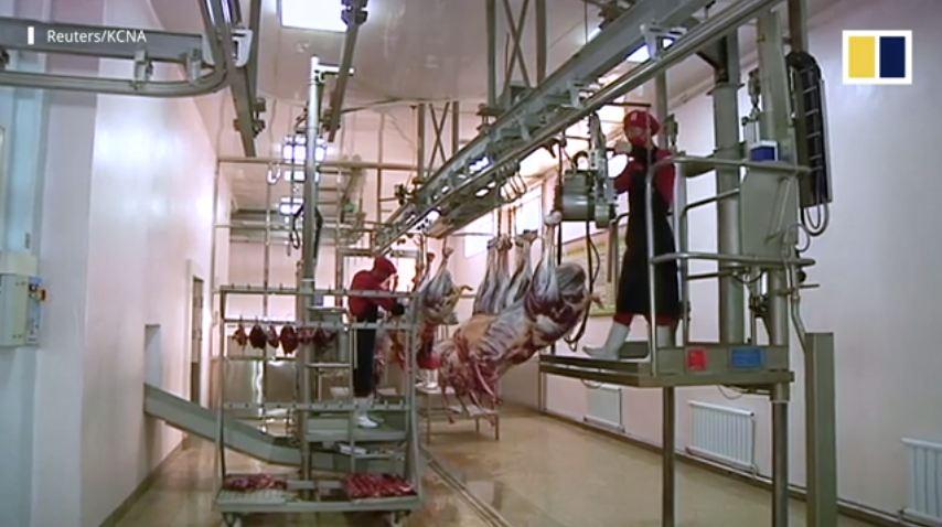 Tận mắt chiêm ngưỡng trang trại đà điểu siêu hiện đại của Triều Tiên 2