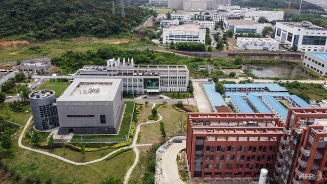 WHO cử người tới Trung Quốc điều tra nguồn gốc Covid-19 1