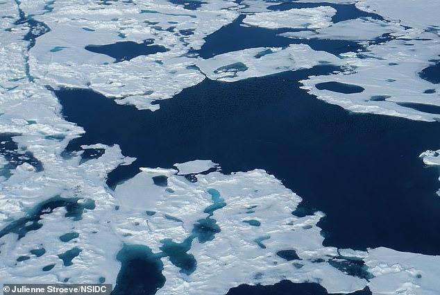 Băng Bắc Cực có thể bị xóa sổ vào năm 2035 1