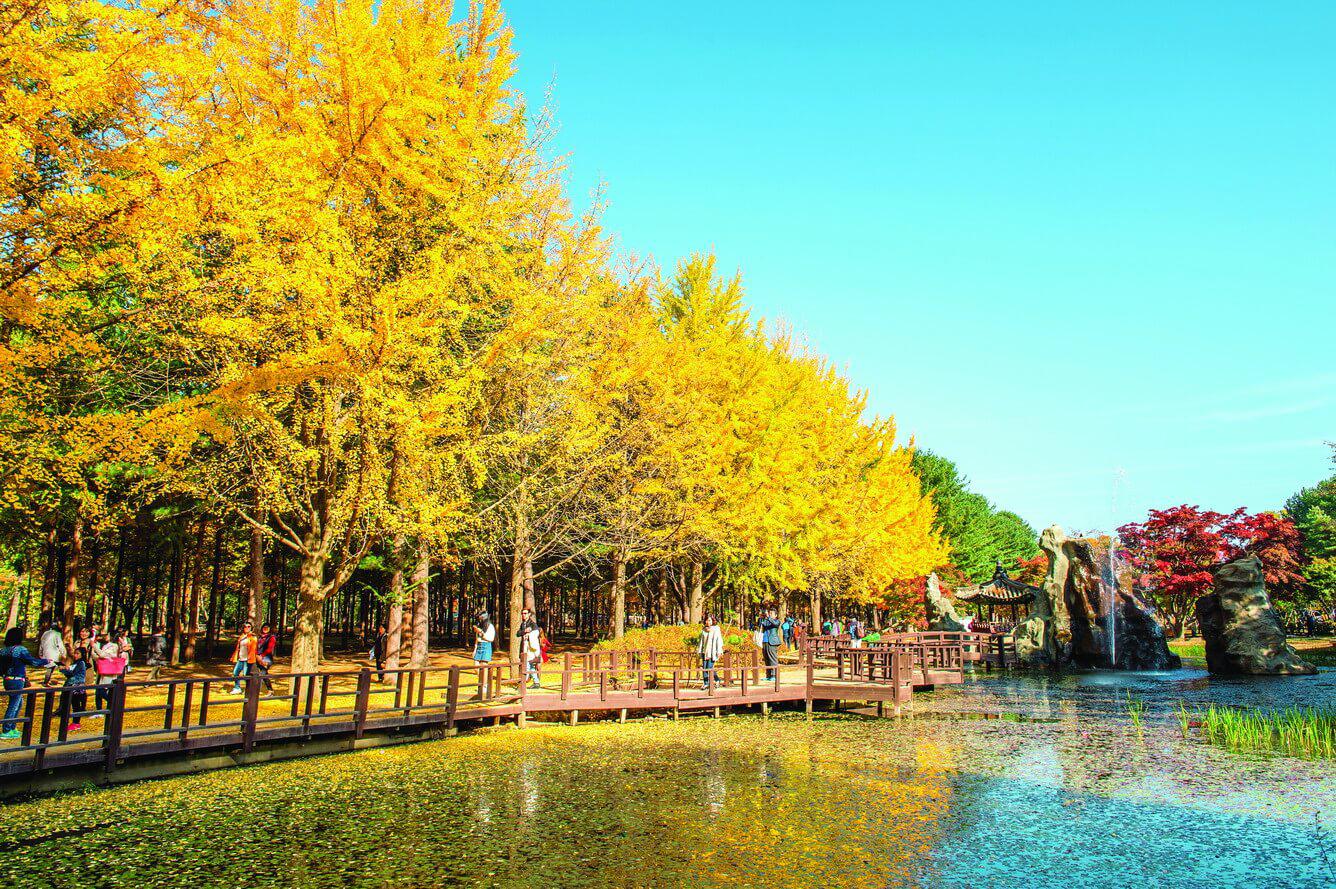 3 tour du lịch Hàn Quốc được nhiều du khách Việt Nam yêu thích 1