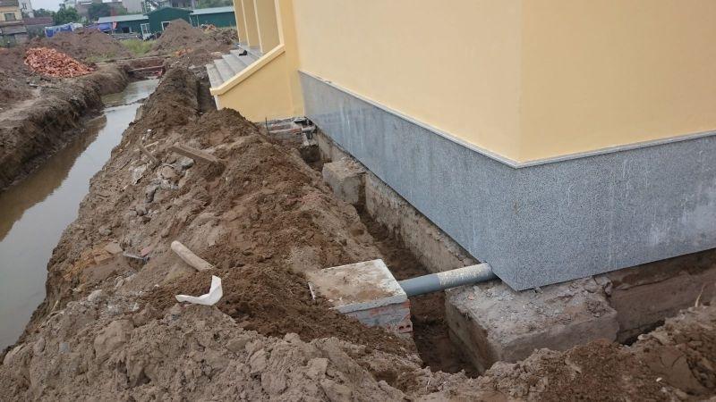 Cách phòng chống mối cho công trình và nhà ở 1