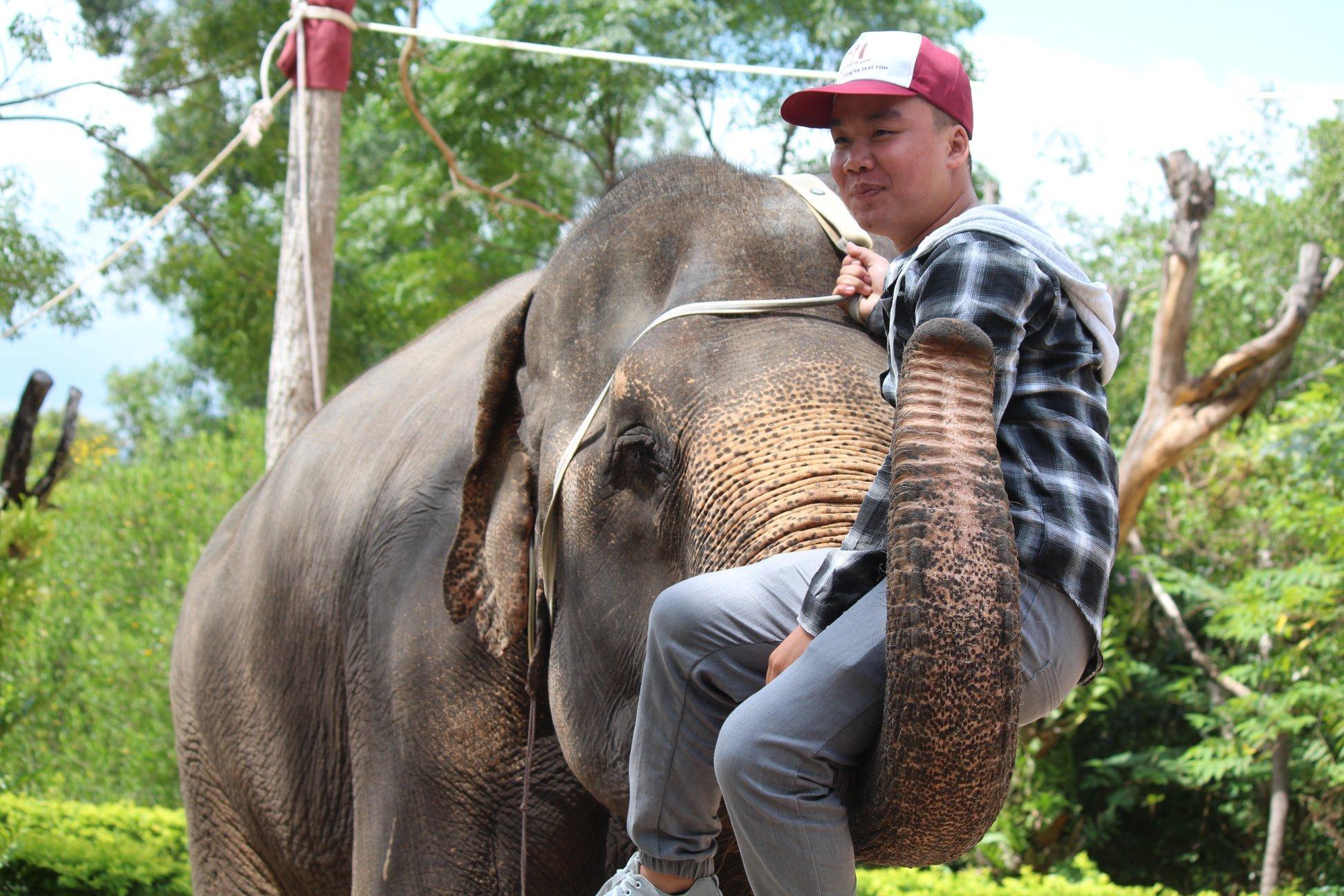 Dân mạng dậy sóng trước câu chuyện con voi bị bóc lột trong gánh xiếc tại Nha Trang 6